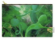 Unfurling Rainbow Soul Collection Carry-all Pouch