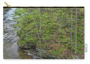 Upper And Middle Falls At Mine Kill State Park Carry-all Pouch