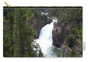 Upper Falls Carry-all Pouch
