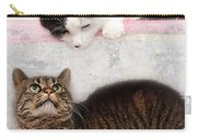 Upstairs Downstairs With Emmy And Pepper Carry-all Pouch
