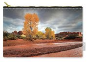 Utah Desert Wash Carry-all Pouch