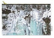Vail Ice Falls Carry-all Pouch