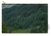 Valley In The French Alps Carry-all Pouch