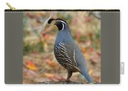 Valley Quail Carry-all Pouch