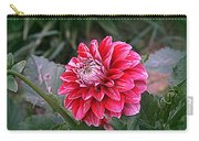 Variegated Colored Dahlia Carry-all Pouch