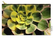 Variegated Succulent Carry-all Pouch