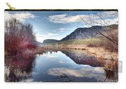 Vaseux Reflections Carry-all Pouch