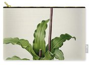 Veltheimia Capensis Carry-all Pouch