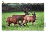 Velvet Antlers In The Sunset Carry-all Pouch