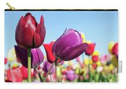 Velvet Red And Purple Tulip Flowers Closeup Carry-all Pouch