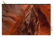 Vermilion Cliffs Narrows Carry-all Pouch