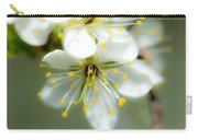 Vermont Apple Blossom Carry-all Pouch