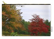 Vermont Roadside Color Carry-all Pouch