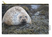 Very Chubby Harbor Seal Carry-all Pouch