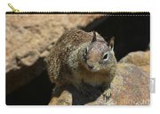 Very Cute Face Of A Wild Squirrel In California Carry-all Pouch