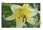Very Pretty Single Blooming Yellow Daylily Flower Carry-all Pouch