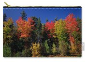 View In The Appalachian Mountains Carry-all Pouch