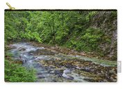 View In Vintgar Gorge - Slovenia Carry-all Pouch