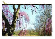 View Of The Lake In Spring Carry-all Pouch