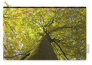 View To The Top Of Beech Tree Carry-all Pouch