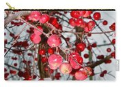 Vignettes - Apples Cider Carry-all Pouch