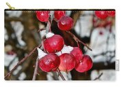 Vignettes - Snow Fruit Carry-all Pouch