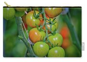 Vine Ripened Rainbows Carry-all Pouch