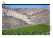 Vineyards In The Atacama Desert Chile Carry-all Pouch