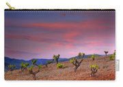 Vineyards At Sunset In Spain Carry-all Pouch