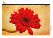 Vintage Gerbera Daisy Carry-all Pouch