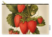 Vintage Strawberries Carry-all Pouch