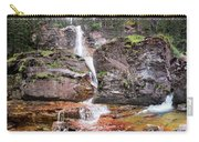 Virginia Falls - Glacier National Park Carry-all Pouch