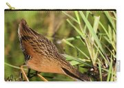 Virginia Rail Carry-all Pouch