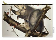 Virginian Opossum Carry-all Pouch