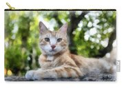 Volterra Italy Cat Watercolor Carry-all Pouch