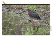 Wading Green Heron Carry-all Pouch