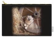Wagon Wheel Kitty. Carry-all Pouch