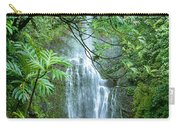 Wailua Falls Carry-all Pouch