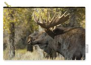 Waiting For The Challengers Carry-all Pouch by Sandra Bronstein