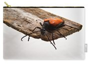 Walking Beetle Carry-all Pouch