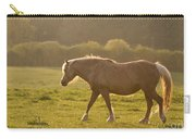 Walking In The Sun Carry-all Pouch