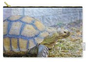 Walking Turtle Carry-all Pouch by Raphael Lopez