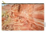 Walls Of Wash 3 In Valley Of Fire Carry-all Pouch