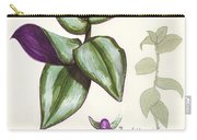 Wandering Jew - Tradescantia Zebrina Carry-all Pouch