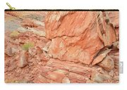 Wash 3 Of Valley Of Fire Carry-all Pouch