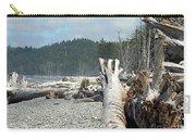 Washington Beach Carry-all Pouch
