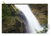 Washington Falls 2 Carry-all Pouch