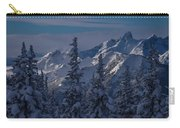 Washington Winter Scene Carry-all Pouch