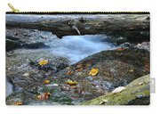 Water Falls Carry-all Pouch
