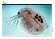 Water Flea Daphnia Magna Carry-all Pouch